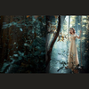 求问这张婚纱照是哪里拍的,森林(๑•ั็ω•็ั